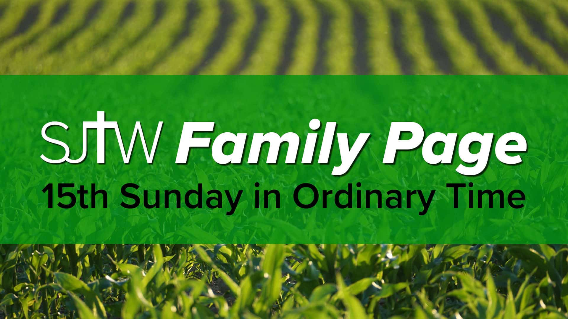 Family Page - 15th Sunday in Ordinary Time