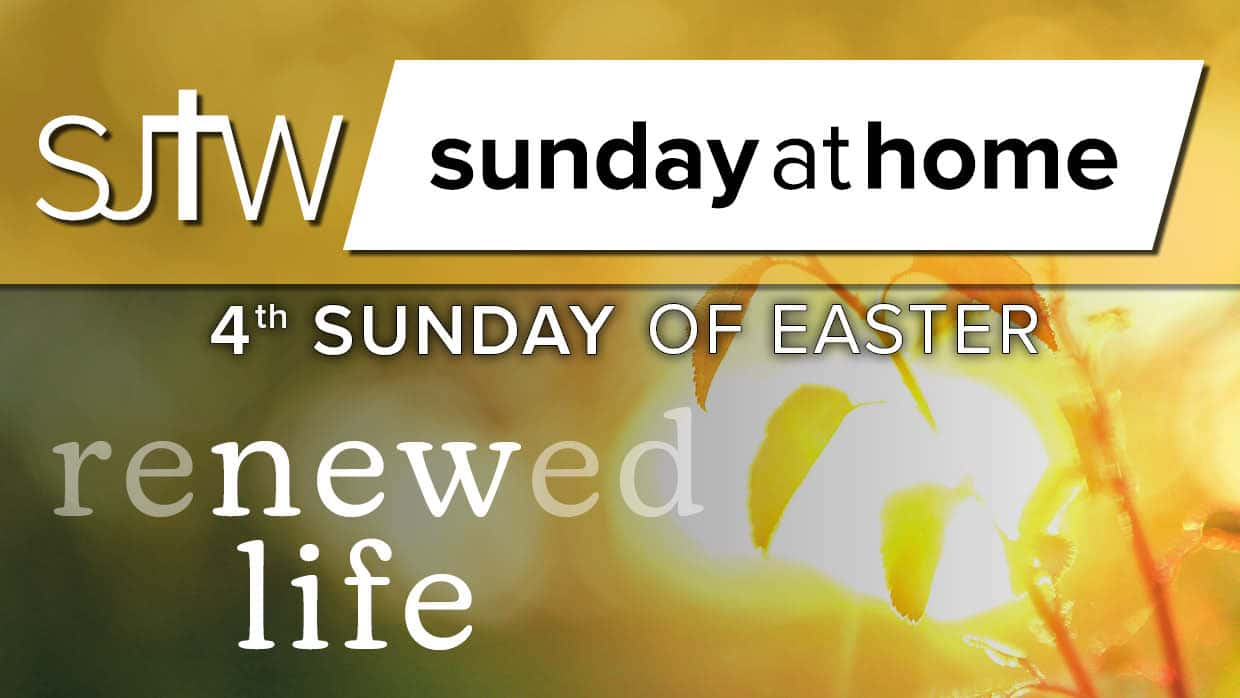 Sunday at Home | April 25